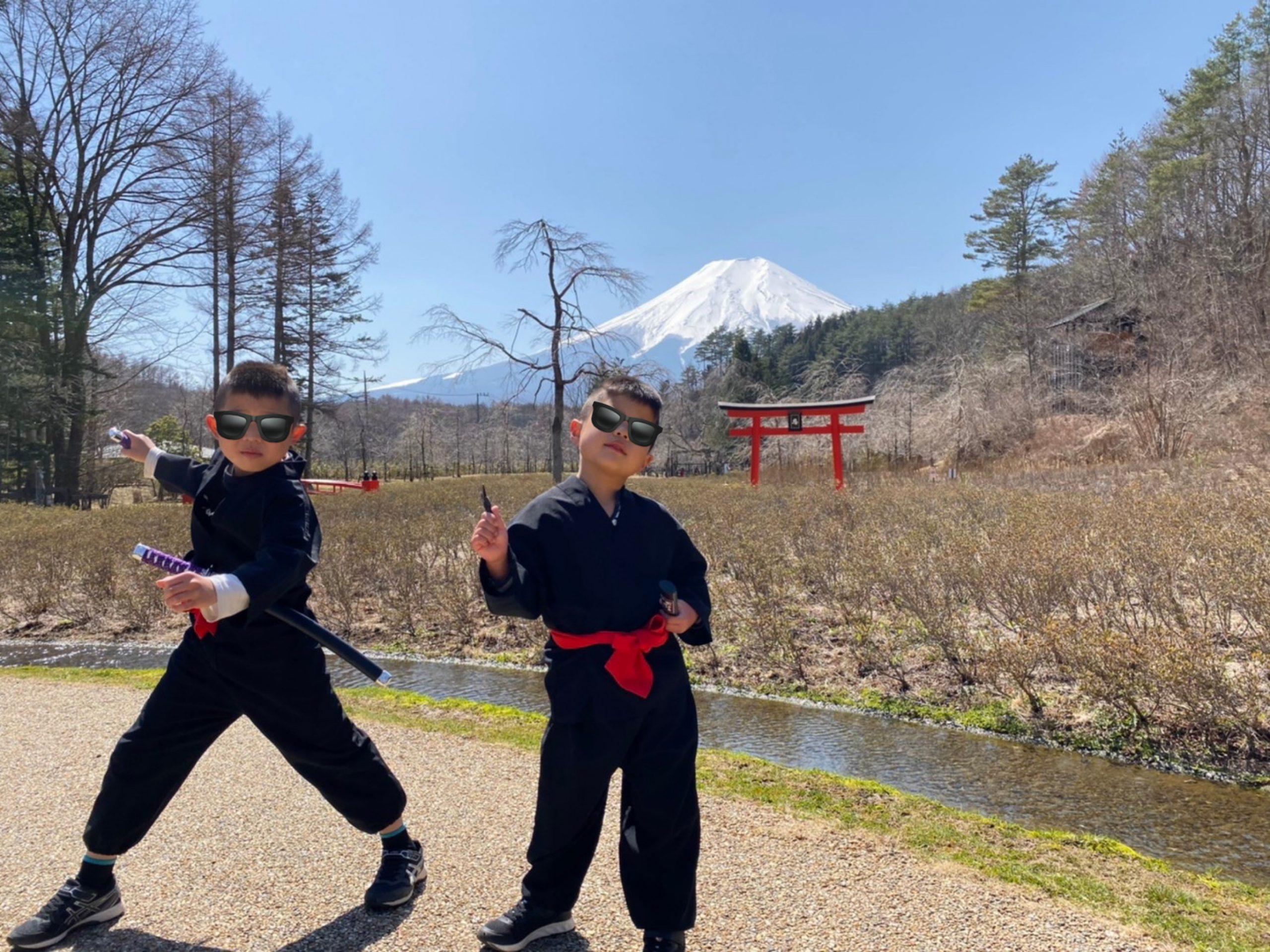 富士山と忍者